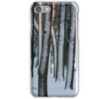 Sunny winter park iPhone Case/Skin