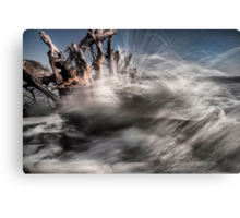 Nature's Fury  Canvas Print