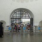 entrance to the kremlin by annet goetheer