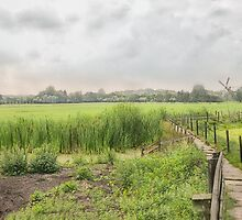 Dutch Countryside  by Johanna26