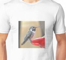 BLACK CHINNED ANNA'S ON PERCH Unisex T-Shirt