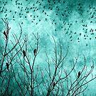 Teal Bird Scarf by debsrockine
