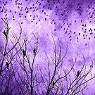 Purple Bird Scarf by debsrockine