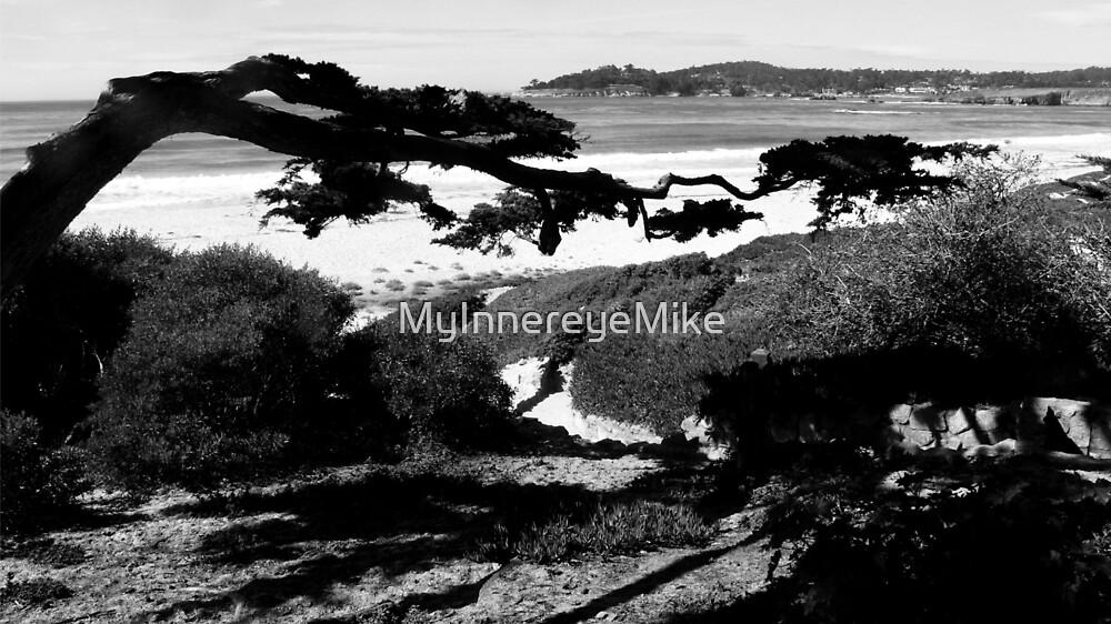 #226  Carmel Beach In Black & White by MyInnereyeMike