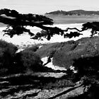 #226  Carmel Beach In Black & White by MyInnereyeMike