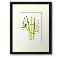 Bamboo Painting Abstract Watercolor Botanical Illustration Drawing Poster Framed Print