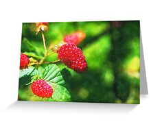 'Berries Greeting Card