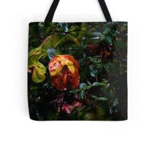 Drenched by Hurricane Matthew Tote Bag
