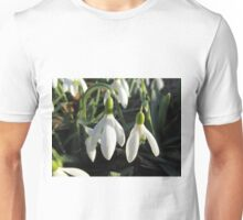 Snowdrops In The Sun Unisex T-Shirt