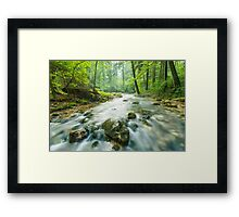 Morning landscape with river and forest Framed Print
