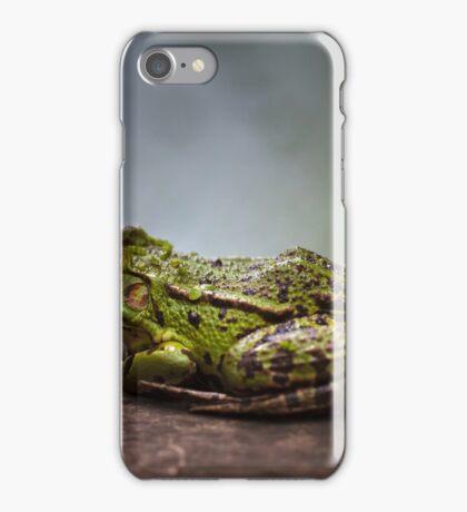 Green frog outdoor iPhone Case/Skin