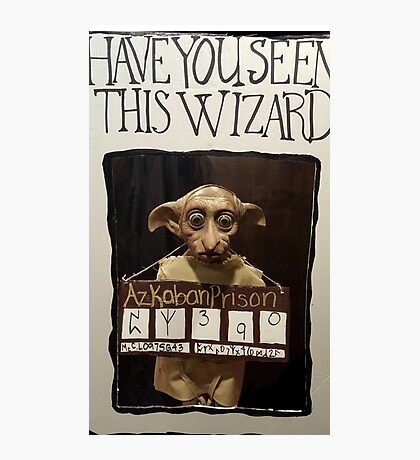 Poor Dobby Photographic Print