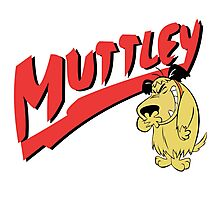 Mutley Photographic Print