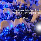 Snow and Light by Charmiene Maxwell-batten
