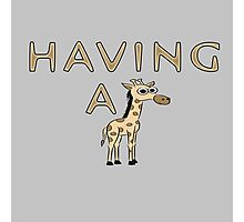 Having a Giraffe Photographic Print