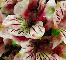 Her Favorite Flowers by Scott Mitchell