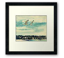 The Love of Flying Framed Print