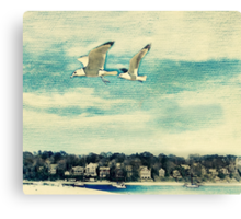 The Love of Flying Canvas Print