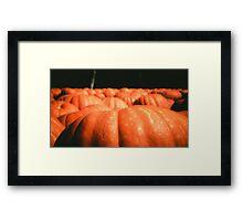 Pumpkins 15 Framed Print