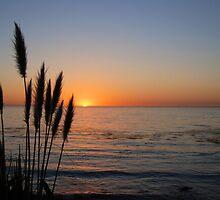 Big Sur Sunset I by Miriam Gordon
