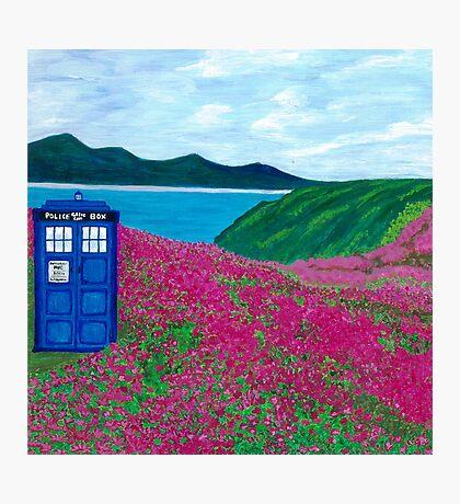 TARDIS: Flower Stop Photographic Print