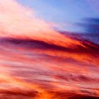 My Evening Sky by Clare Colins