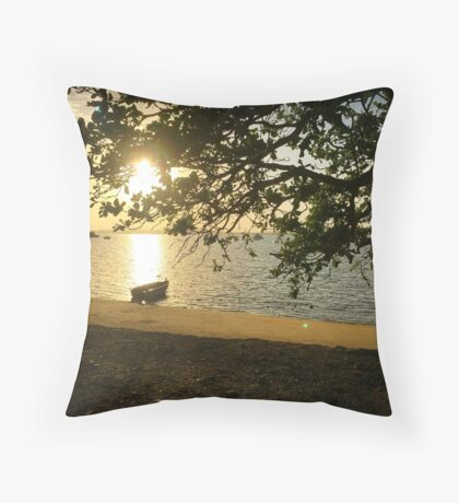 The day ahead! Throw Pillow