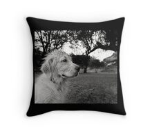 Dogs with game face on .37 Throw Pillow