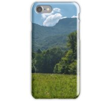 Deciduous forest in the summer iPhone Case/Skin
