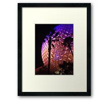 Epcot Center Framed Print