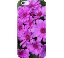 Zinnias iPhone Case/Skin