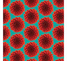 Beautiful Dahlia fresh air background pattern design Photographic Print
