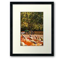Pumpkins 17 Framed Print