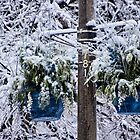 Blue Hanging Pots on Pole after the Great Ice Storm of 2013 by Gerda Grice