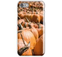 Pumpkins 18 iPhone Case/Skin