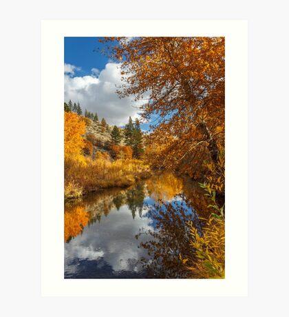 Susan River Autumn Reflections Art Print