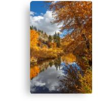Susan River Autumn Reflections Canvas Print