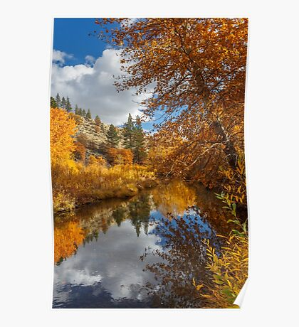 Susan River Autumn Reflections Poster
