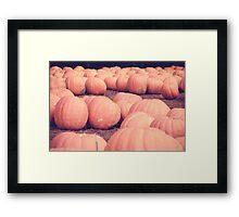 Pumpkins 20 Framed Print