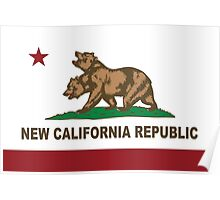 New California Republic Flag Original  Poster