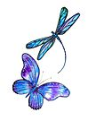 Dragonfly and Butterfly Flight by Linda Callaghan