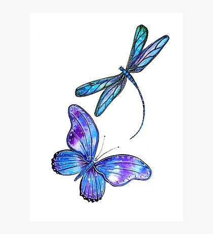 Dragonfly and Butterfly Flight Photographic Print