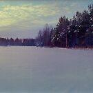 Winter Field, Finland (1996) by Peter Morse