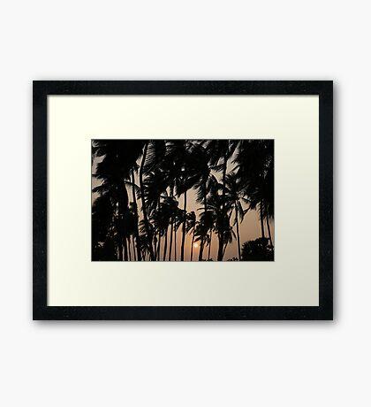 coconut sunset Framed Print