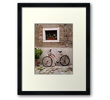 Bicycle and Plants Framed Print
