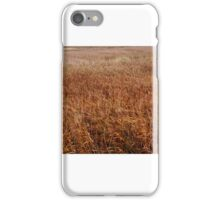 fields of gold (grass) in Norfolk iPhone Case/Skin