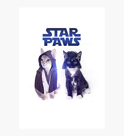 Star Wars Cats Photographic Print
