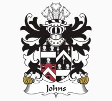 Johns Coat of Arms (Welsh) Kids Clothes