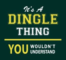 It's A DINGLE thing, you wouldn't understand !! by satro