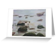 Shirley's Dog Greeting Card